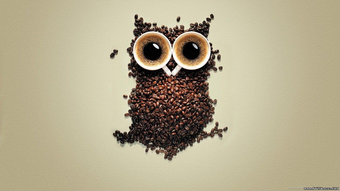 Филин из кофе, пейте кофе и будите такими, не спится?